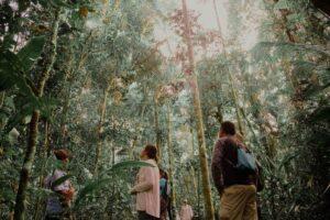 Iquitos Tours/ Quistococha