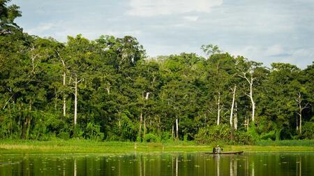 (Español) 3 atractivos que debes incluir un tour en Iquitos