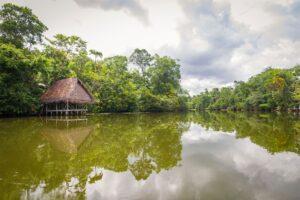Tour Iquitos/ Pacaya Samiria