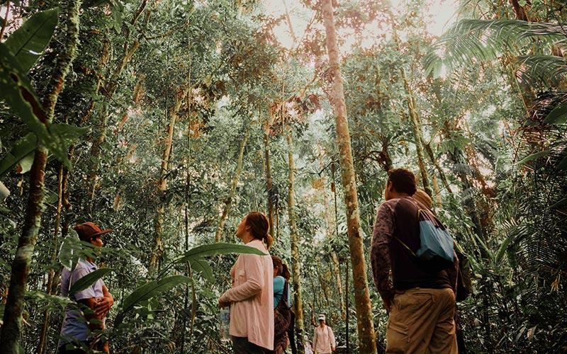 (Español) ¿Qué hacer en Iquitos? Explora Pacaya Samiria, atractivo turístico natural, junto a Hoteles El Dorado.